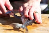 Čerstvú makrelu umyjeme a osušíme.