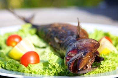 Makrela údená na grile