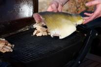 Potom dáme kaprie filety na rozpálený gril vedľa údiacich lupienkov.