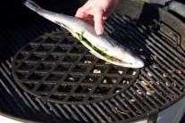 Rozpálime si gril a rybu položíme na rošt.