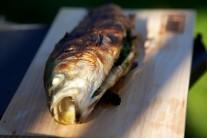 Pre lepšiu chuť môžeme k rybe pridať plátky citróna a ako prílohu čerstvé pečivo.