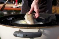 Ryby patria do skupiny zdraviu prospešných potravín. Ich konzumácia by mala byť aspoň 1 - 2 x týždenne. Rybie mäso je veľmi ľahko stráviteľné a jeho nespornou výhodou je aj pomerne krátka doba tepelnej úpravy.